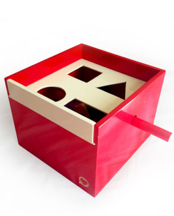 5 in 1 shape sorter